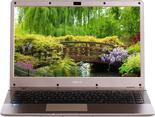 """14"""" Ноутбук DEXP Athena T147 золотистый"""