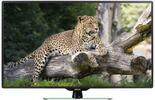 """39"""" (99 см)  LED-телевизор DEXP F39B7100E черный"""