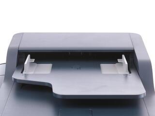 МФУ лазерное Xerox WorkCentre 3335DNI