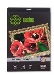 Фотобумага Cactus CS-СA326010