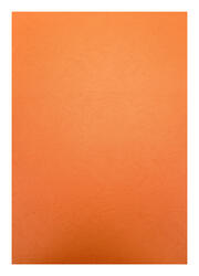 Обложка для переплета  РеалИСТ картон кожа А3