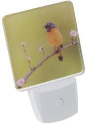 Светильник декоративный Старт NL 1LED Птица зеленый, белый