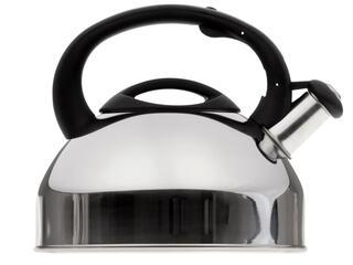 Чайник Tefal C7922024 серебристый