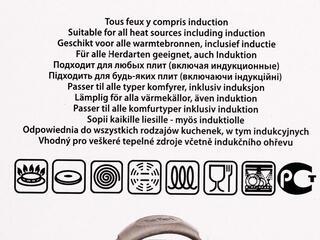 Ковш Tefal Inspiration E8312214 серебристый
