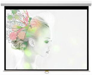 """100"""" (254 см) Экран для проектора Classic Solution Premier Orion (4:3) 213х213 (W 203х152/3 МW-PC/W)"""