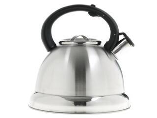 Чайник Lara LR00-59 серебристый