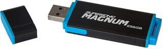 Память USB Flash Patriot PEF256GSMNUSB 256 Гб