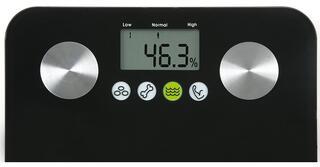 Весы Salter SALTER 9106