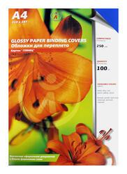 Обложка для переплета  РеалИСТ картон глянец А4