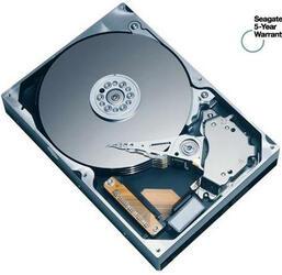 300 Гб Жесткий диск Seagate 7200 [ST3300622A]