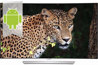 "55"" (139 см)  OLED-телевизор LG 55EG920V черный"