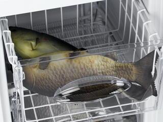 Морозильный шкаф Hansa FZ096.4