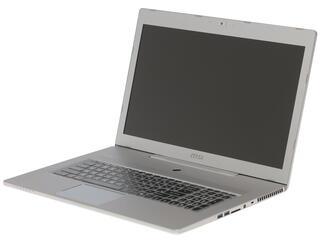 "17.3"" Ноутбук MSI GS70 Stealth 6QC-072XRU серый"