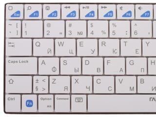 Клавиатура для планшетов Rapoo E6300