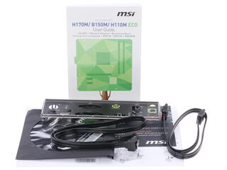 Материнская плата MSI  H110M ECO