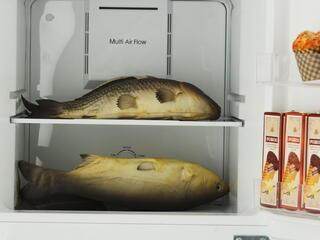Холодильник с морозильником DEXP NF240D белый