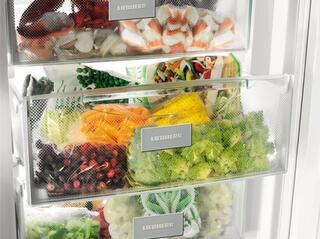 Морозильный шкаф Liebherr GN 3613 20 001