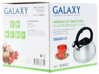 Чайник Galaxy GL9212 серебристый