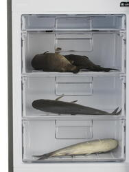 Холодильник с морозильником LG GA-B409SMQL серебристый