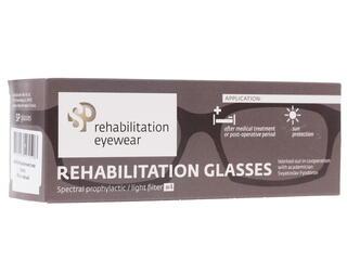 Очки защитные SPGlasses AS102 luxury