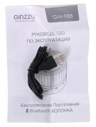 Портативная аудиосистема GINZZU GM-988G