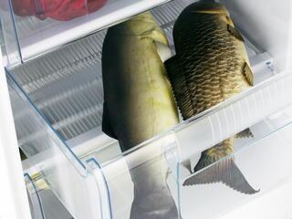 Морозильный шкаф Hansa FZ208.3