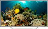 "40"" (101 см)  LED-телевизор DEXP F40B7000E серебристый"