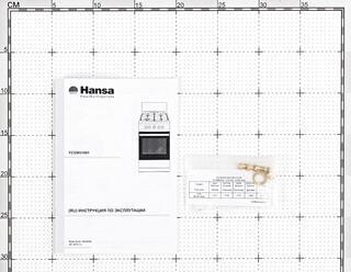 Газовая плита Hansa FCGW51001 белый