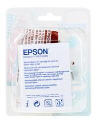 Картридж струйный Epson T0632