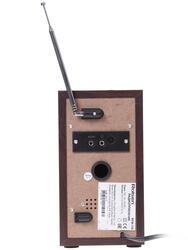 Радиоприёмник Rolsen RFM-120
