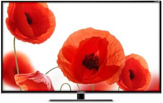 """40"""" (101 см)  LED-телевизор Telefunken TF-LED40S13 черный"""
