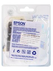 Картридж струйный Epson T0482