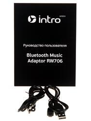 Преобразователь аудиосигнала Intro RW706