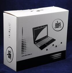 "17.3"" [Home] Ноутбук DNS (0124039) (HD+)"