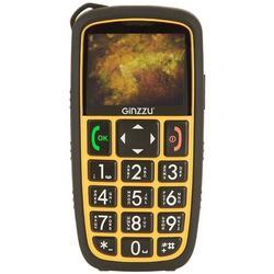 Сотовый телефон Ginzzu R31 Dual