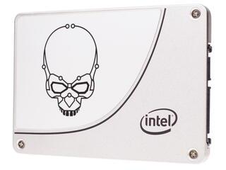 480 ГБ SSD-накопитель Intel 730 Series [SSDSC2BP480G4R5]