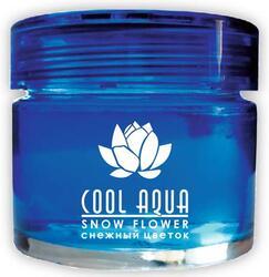 Ароматизатор Cool Aqua СА-13