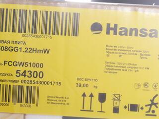 Газовая плита Hansa FCGW51000 белый