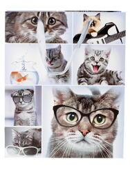 Пакет подарочный Из жизни кошек