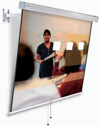 Экран настенный Projecta FlexScreen