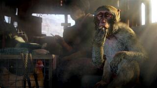 Игра для Xbox ONE Far Cry 4. Специальное издание