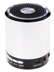 Портативная аудиосистема DEXP P100