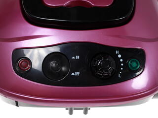 Отпариватель Endever Odyssey Q-801 розовый