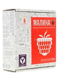 Электронный конструктор Малина Y
