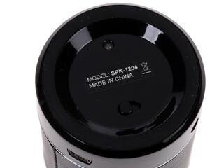 Портативная аудиосистема EXEQ SPK-1204