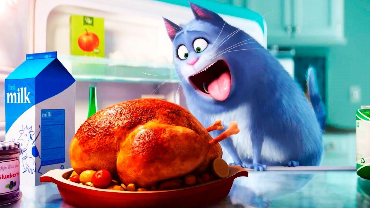 жизнь домашних животных мультфильм масла жарки