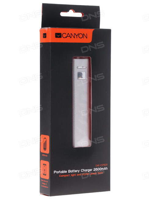 Аккумулятор Canyon 10000mAh Dark Gray CNS-TPBP10DG