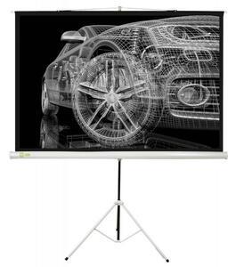 """100"""" (254 см) Экран для проектора Cactus Triscreen CS-PST-124x221"""
