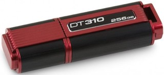 Память USB Flash Kingston DataTraveler DT310 256 Гб