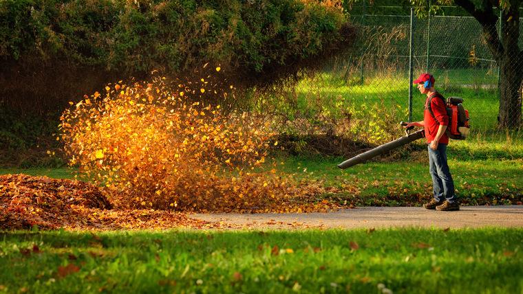 Пылесос для уборки листьев своими руками